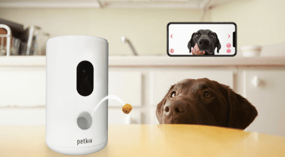 Petkix Device and Dog